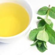 Fragrance Thé à la menthe poivrée