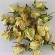 Boutons de Roses ivoires 50g