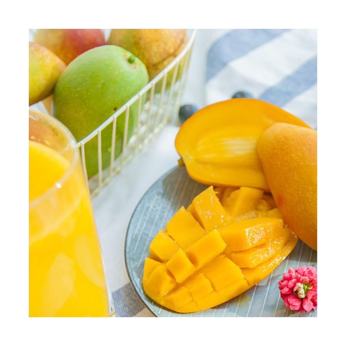 Fragrance Mangue (Grasse) Sans allergène
