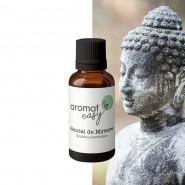 Fragrance Santal de Mysore - Sans allergène