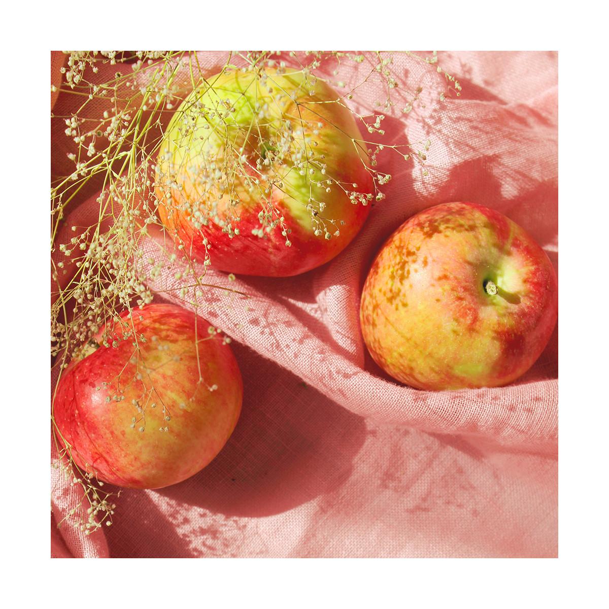 Fragrance Le fruit défendu - Sans allergène