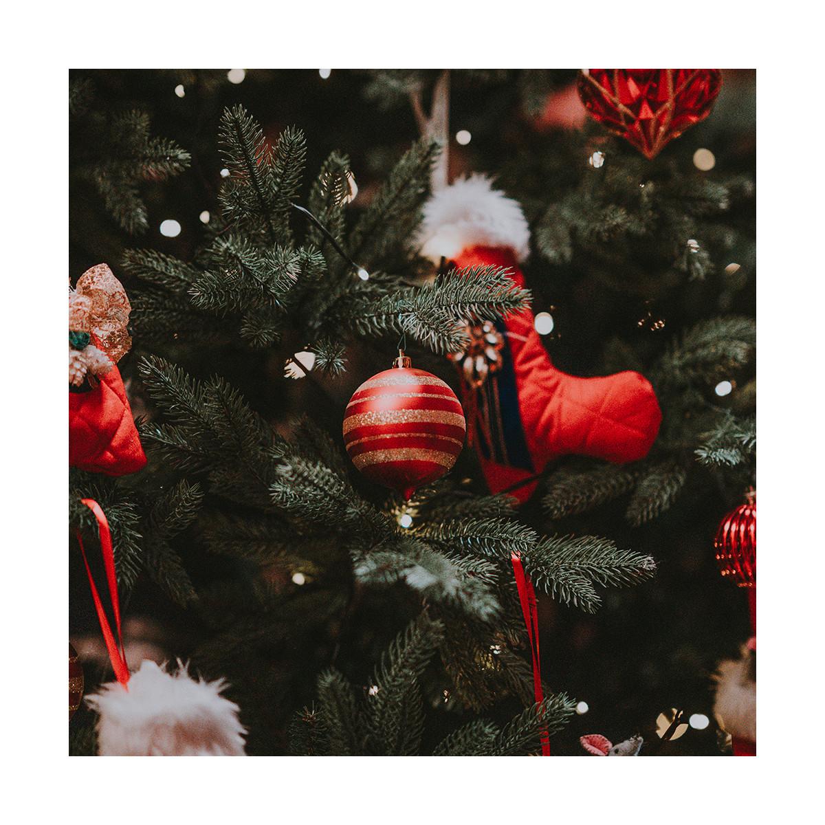 Fragrance Souvenirs de Noël