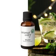 Fragrance Naturelle Mojito