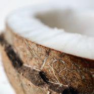 Fragrance Naturelle Coconut gourmand